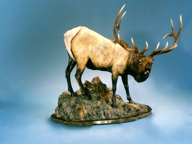 Elk Valley Minstrel
